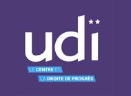 UDI2.png